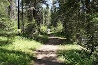 Up Goose Creek
